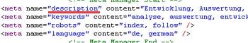 Aussehen der Meta Description auf einer Website