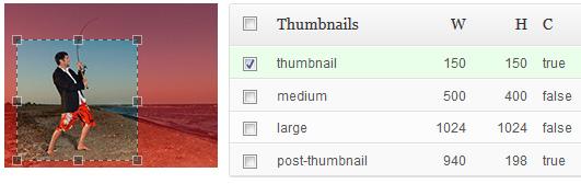 post-thumbnail-editor-vorschaubild-ausschnitt