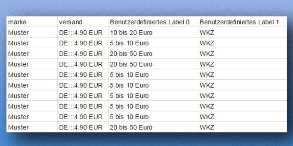 Benutzerdefinierte WKZ Label